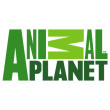 Free download Animal planet logo vector