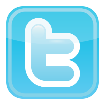 Twitter icon vector