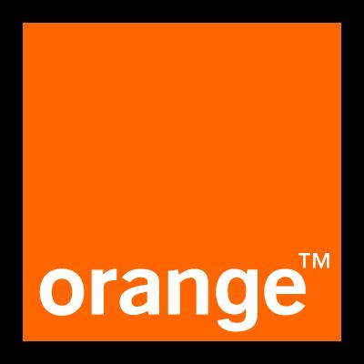 Orange logo vector