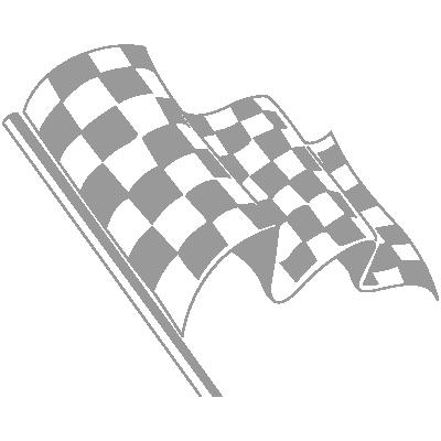 Car Cosmetic flag vector