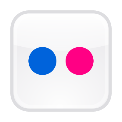 Flickr button vector free