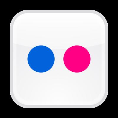 Flickr button vector