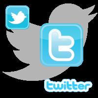 Twitter logo vector, Twitter icon vector