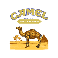 Camel (.AI) logo vector