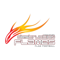 Destruction Flames logo vector