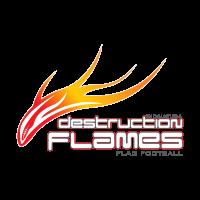 Destruction Flames logo vector