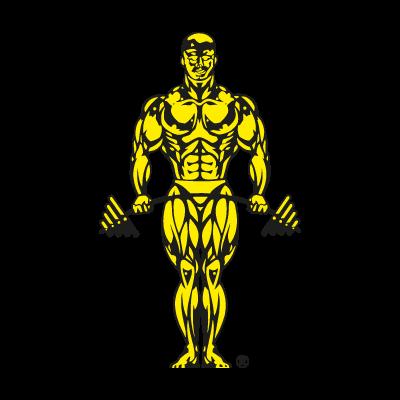Gold's Gym logo vector