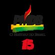 PMDB 15 logo vector