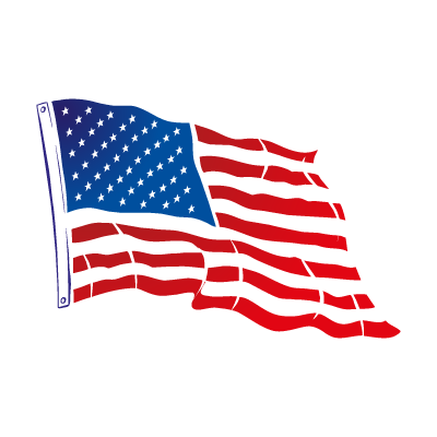Flag of USA Flying logo vector