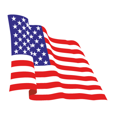 Flag of USA logo vector