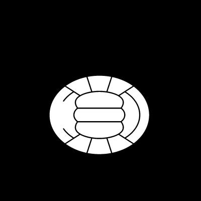 K. Bocholter VV logo vector