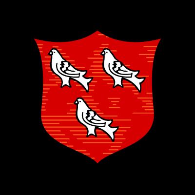Dundalk FC (Old) logo vector
