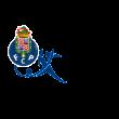 FC Porto (2007) logo vecto logo vector