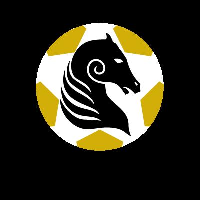 Kildare County FC logo vector