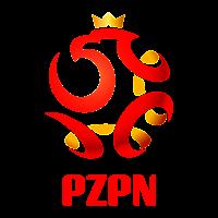 Polski Zwiazek Pilki Noznej (2011) vector logo