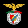 Sport Lisboa e Benfica logo vector