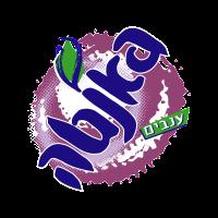 Fanta Israel vector logo