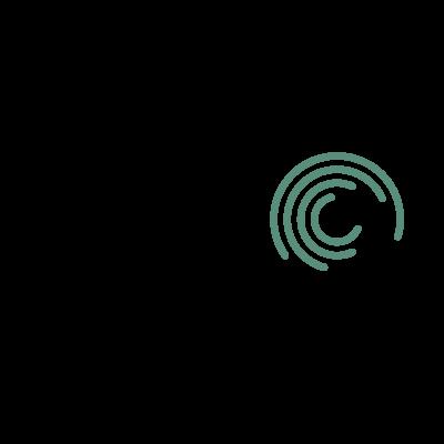 Seagate 10.2002 logo vector