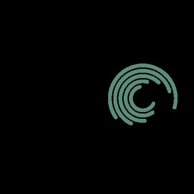 Seagate Old logo vector