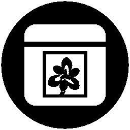 Pinstagram logo